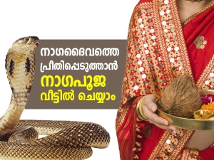 Nag Panchami 2021 How To Perform Nag Panchami Pooja At Home In Malayalam