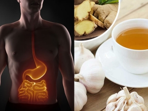 Health Benefits Of Drinking Ginger And Garlic Tea In Malayalam