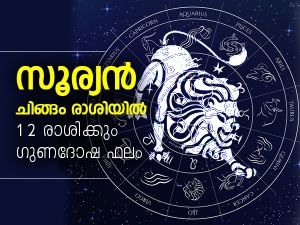 Sun Transit In Leo On 17 August 2021 Effects On Zodiac Signs In Malayalam