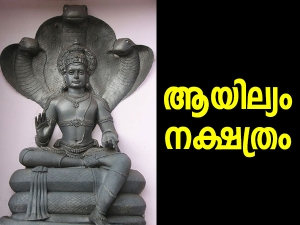 Why Is Ayilyam Nakshatra Is Important For Naga Worship In Hinduism In Malayalam