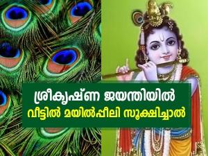 Krishna Janmashtami Vastu Dosha Remedy Using Peacock Feather In Malayalam