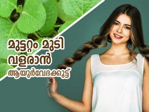 Ayurvedic Herbs For Hair Growth In Malayalam