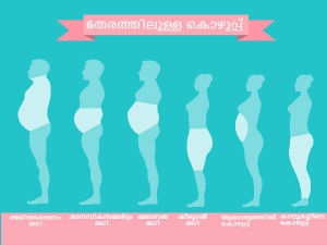 Types Of Body Fat Dangers And Role Of Diet In Malayalam