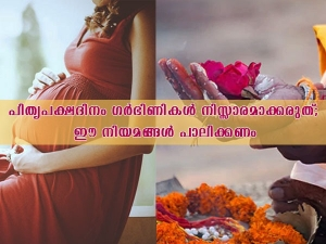 Pregnant Women Should Not Do These Things During Pitra Paksh In Malayalam