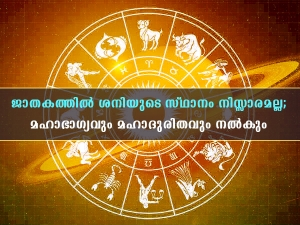 Impacts Of Saturn In 12 Houses Of Horoscope Or Kundli In Malayalam