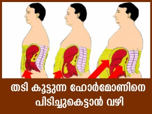Tips To Control Your Hunger Hormone In Malayalam