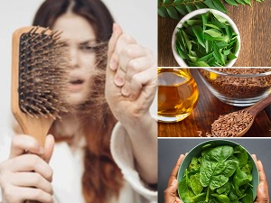 Food You Must Eat To Prevent Post Covid Hair Fall In Malayalam