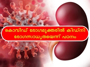 Kidney Damage Found In Covid 19 Recovered Patients