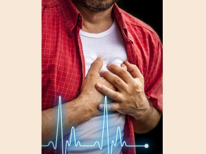 World Heart Day Balanced Lifestyle And Avoid Heart Attack In Malayalam