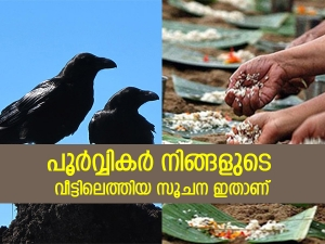 Pitru Paksha Signs That Shows That Ancestors Are Pleased With You In Malayalam