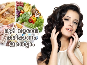 Vitamin B Rich Foods For Hair Growth In Malayalam