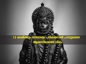 How To Worship Lord Hanuman As Per Zodiac Signs To Avoid Bad Luck In Malayalam